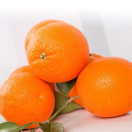 1 x 15KG. BOX OF TABLE ORANGE
