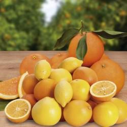 Caja de 15 kg de naranja de mesa con limones