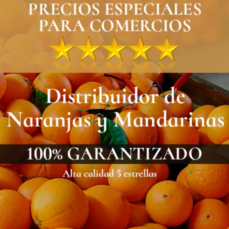 Especial Comercios PARA COMERCIOS
