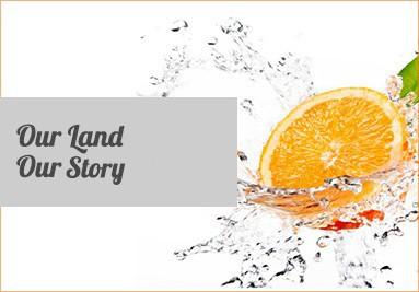 Our Land Our Story